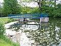 Petrovický rybník.jpg