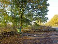 Picnic area on Epperstone Road - geograph.org.uk - 614277.jpg