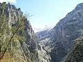 Picu Urriellu ( Naranjo de Bulnes ) desde Camarmeña - panoramio.jpg