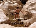 PikiWiki Israel 36838 Vacation Experience.jpg