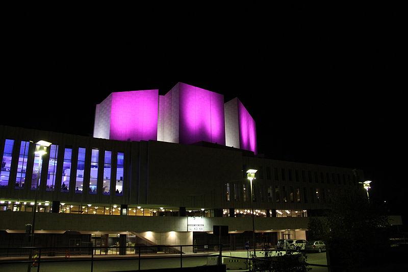 Pink Finlandia 2012 1.jpg