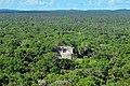 Piramides de Palenque chicas.JPG