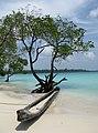 Pirogue on Havelock beach, Andaman.jpg