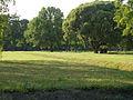 Piskarevskoye Memorial Cemetery common graves 01.jpg