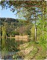 Plüderhausener See im Frühling.jpg