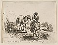 Plate 11- a young horseman, seen from the front, leading another horse, from 'Diversi capricci' MET DP817410.jpg