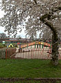 Playground from Under the Cherry Tree - geograph.org.uk - 1233844.jpg