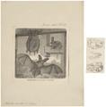 Plecotus auritus - 1700-1880 - Print - Iconographia Zoologica - Special Collections University of Amsterdam - UBA01 IZ20800087.tif