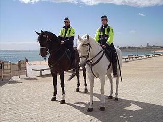 Policía Montada de la Guardia Urbana