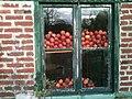 Pommes à la fenêtre.jpg