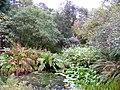 Pond in Arduaine Garden - geograph.org.uk - 1549759.jpg