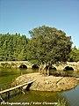 Ponte do Cabeço do Vouga - Portugal (5538055703).jpg