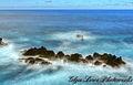 Porto Moniz, Madeira (16586608181).jpg