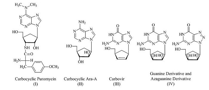 Prepared Carbocyclic Nucleoside Analogs by Using Vince Lactam