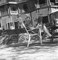 Prime Minister Jawaharlal Nehru relaxing in the lawns of Vicerigal Lodge, Simla.jpg