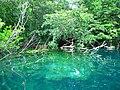 Profundidad del Cenote. - panoramio.jpg