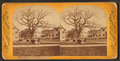 Prospect Park and Congdon St, from Robert N. Dennis collection of stereoscopic views.png