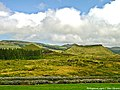 Proximidades da Lagoa do Negro - Ilha Terceira - Portugal (5106067604).jpg