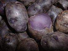 57ff008e58c Liste de variétés de pommes de terre — Wikipédia