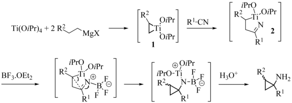 Szymoniak variation reaction mechanism