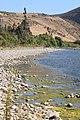 Río Choapa Coquimbo Chile 13.jpg