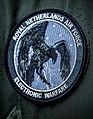 RNLAF Electronic Warfare.jpg