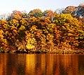 Raritan River in Rutgers.jpg
