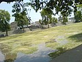 Rashedia Ground multan - panoramio.jpg