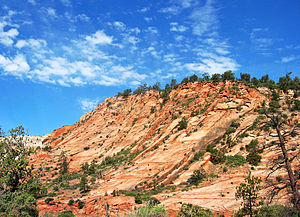 English: View of a red cliff in Zion National ...