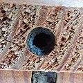 Red mason bee (Osmia bicornis) nest being sealed, Sandy, Bedfordshire (8912346796).jpg