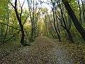 Remete Valley 02.jpg