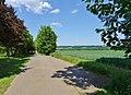 Remscheider Straße Pirna (41397982505).jpg