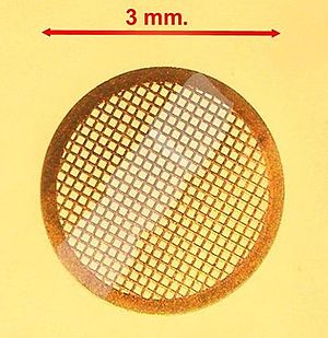 "Transmission electron microscopy - TEM sample support mesh ""grid"", with ultramicrotomy sections"