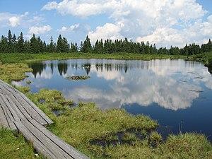 Ribnica lake in Slovenia
