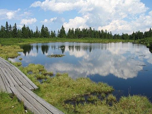 Ribnisko jezero