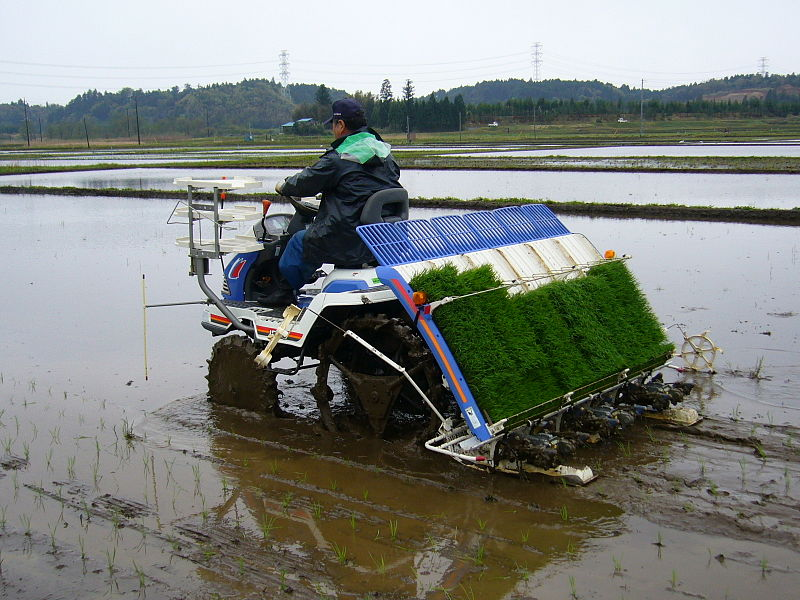 http://upload.wikimedia.org/wikipedia/commons/thumb/9/9a/Rice-planting-machine_2,katori-city,japan.JPG/800px-Rice-planting-machine_2,katori-city,japan.JPG