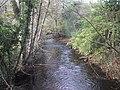 River Bovey at Parke - geograph.org.uk - 1559560.jpg