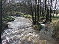 River Churnet - geograph.org.uk - 336059.jpg