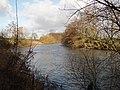River Derwent - geograph.org.uk - 1271371.jpg
