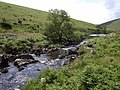River Erme - geograph.org.uk - 1358196.jpg