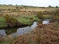 River Fowey - geograph.org.uk - 708311.jpg