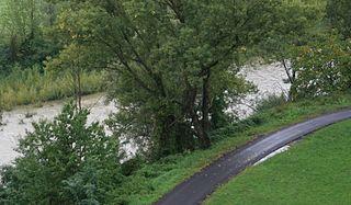 Taro (river) river in Emilia-Romagna, in northern Italy