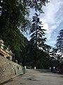 Road of Himachal.jpg