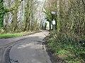 Road through Walderchain Woods - geograph.org.uk - 366132.jpg