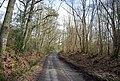 Roger's Rough Rd (4) - geograph.org.uk - 1765257.jpg