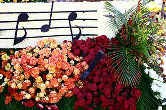 Rose Parade - A close-up of roses used to create a parade float