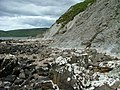 Rubha Dubh Ard - geograph.org.uk - 491048.jpg