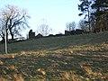 Ruin Near Muttonhole Road - geograph.org.uk - 99521.jpg
