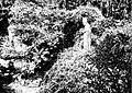 Ruines de l'ancienne abbaye de Landévennec en 1903.jpg