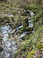Ruisseau de la petite source d'Arcier.jpg